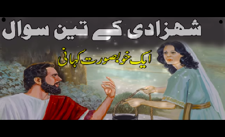 3 Intresting Questions of Princess : Rohail Voice